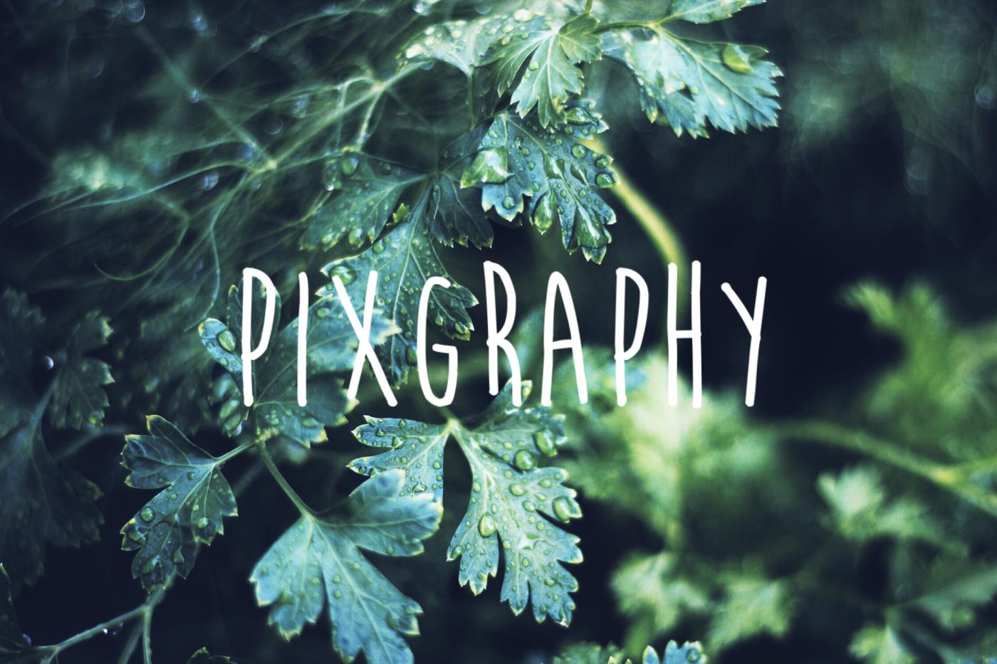 画像・写真で魅せる、WordPress無料テーマなら、「Pixgraphy」